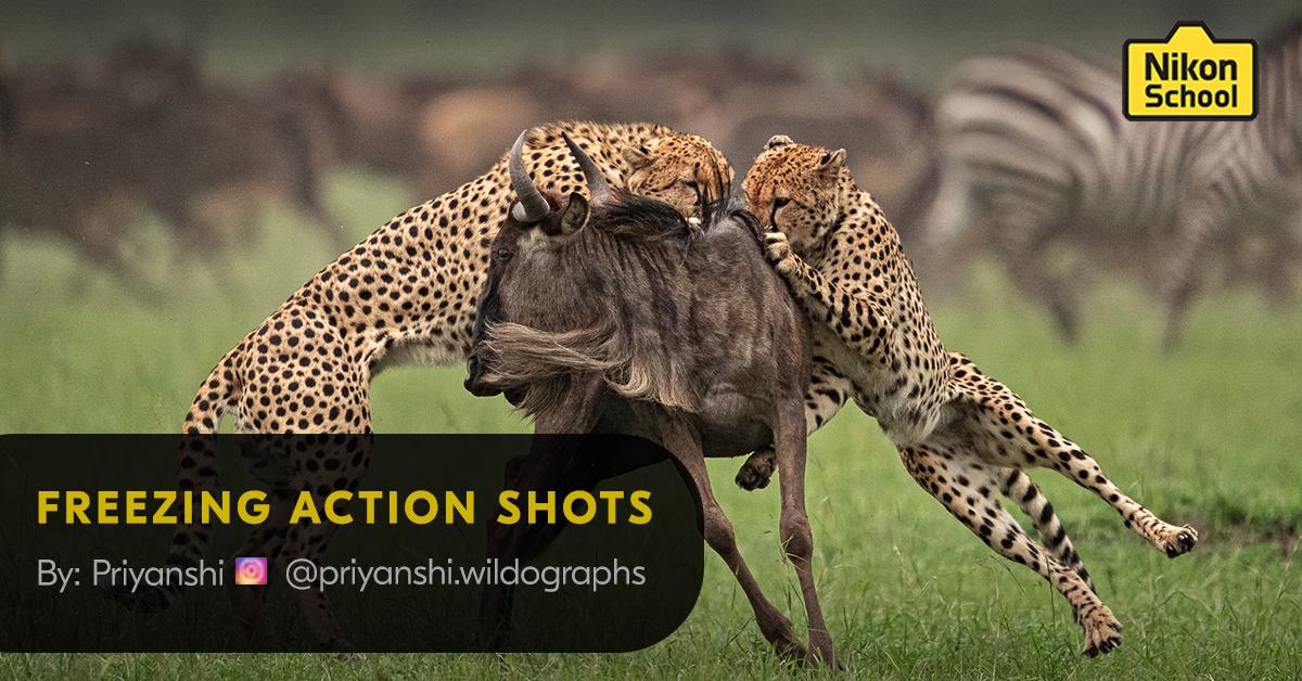 FREEZING ACTION SHOTS