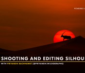 SHOOTING AND EDITING SILHOUETTES