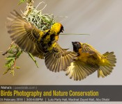 Birds Photography and Nature Conservation