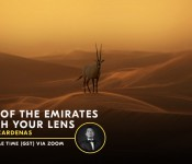 Beauty of the Emirates Through Your Lens