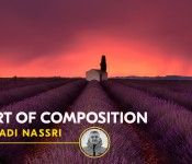 THE ART OF COMPOSITION