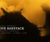CREATIVE HAYSTACK